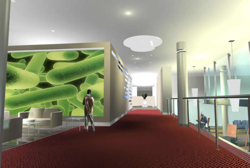 Campus Master Plan & Interior Commons